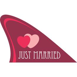 Aileron de requin tient env. 15 kg, gadget magnétique pour votre voiture, 'Just married'