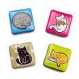 Dekomagnete mit Katzenmotiven, 4er Set
