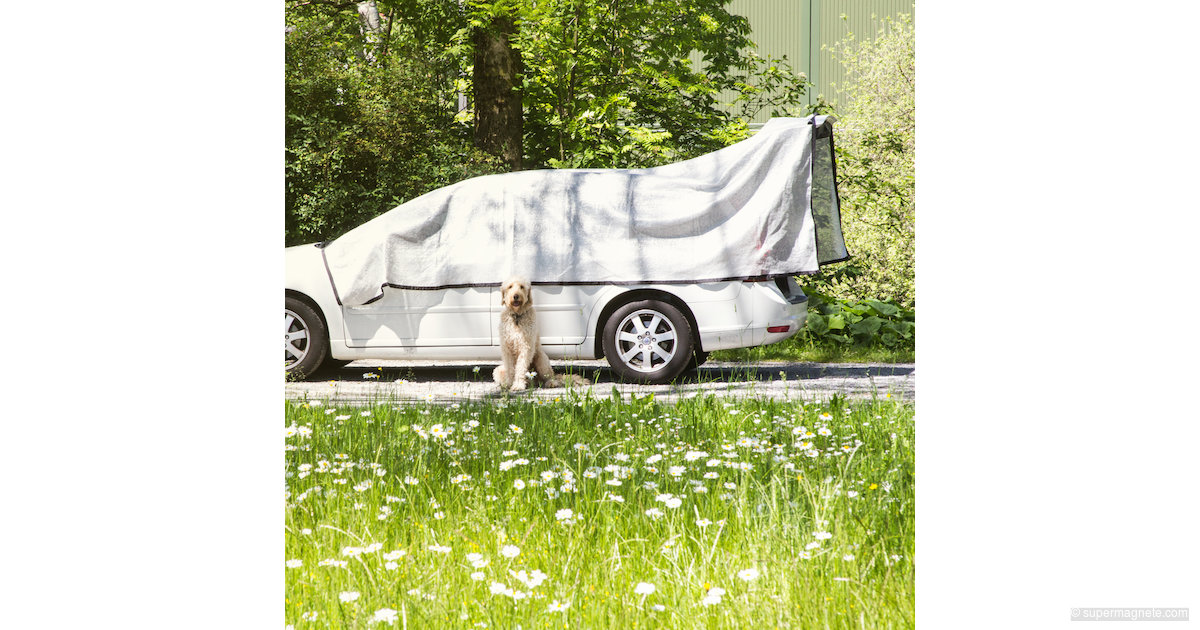 alunet schattiernetz f r auto schutz f r hund 3x5 m supermagnete. Black Bedroom Furniture Sets. Home Design Ideas