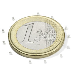S-01-01-N, Disco magnetico Ø 1 mm, altezza 1 mm, neodimio, N45, nichelato