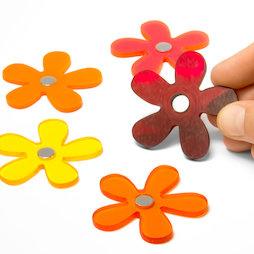 AG-03, Summer Flowers, bloemenmagneten in zomerkleuren, set van 5