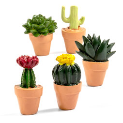 LIV-131, Cactus, fridge magnets in cactus shape, set of 5