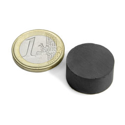 FE-S-20-10, Disc magnet Ø 20 mm, height 10 mm, ferrite, Y35, no coating